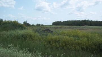 Land available in Headingley, MB.
